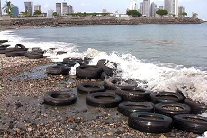 Donna Conlon, Low Tide, video, 2004